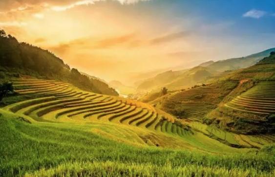 北京恒昌賦能可持續發展 激活鄉村內生動力