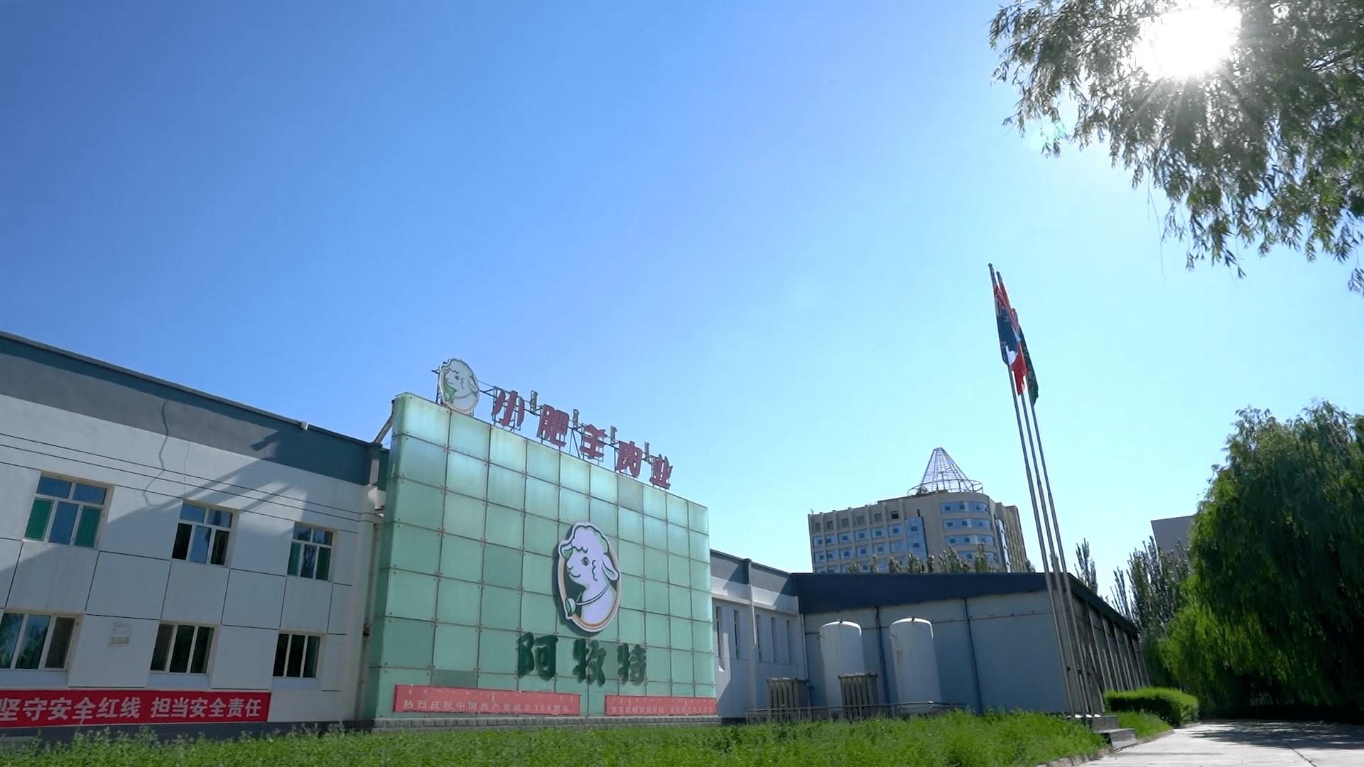 新产品、新品类的研发成为增长引擎,阿牧特为国人打造高品质的冷鲜羊肉