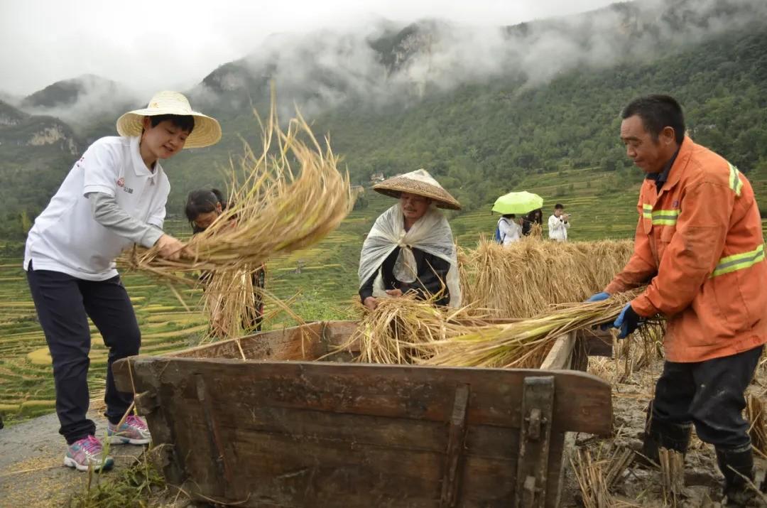 恒昌通过产业发展带动农民就业 营造乡村振兴发展良性生态